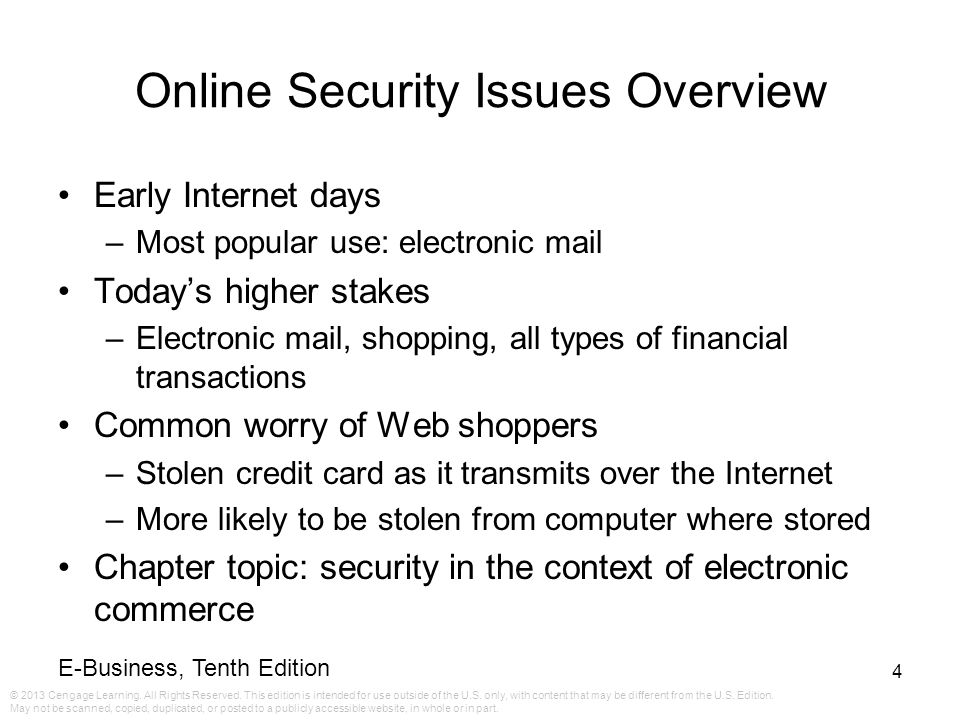 Online Security Issues Overview