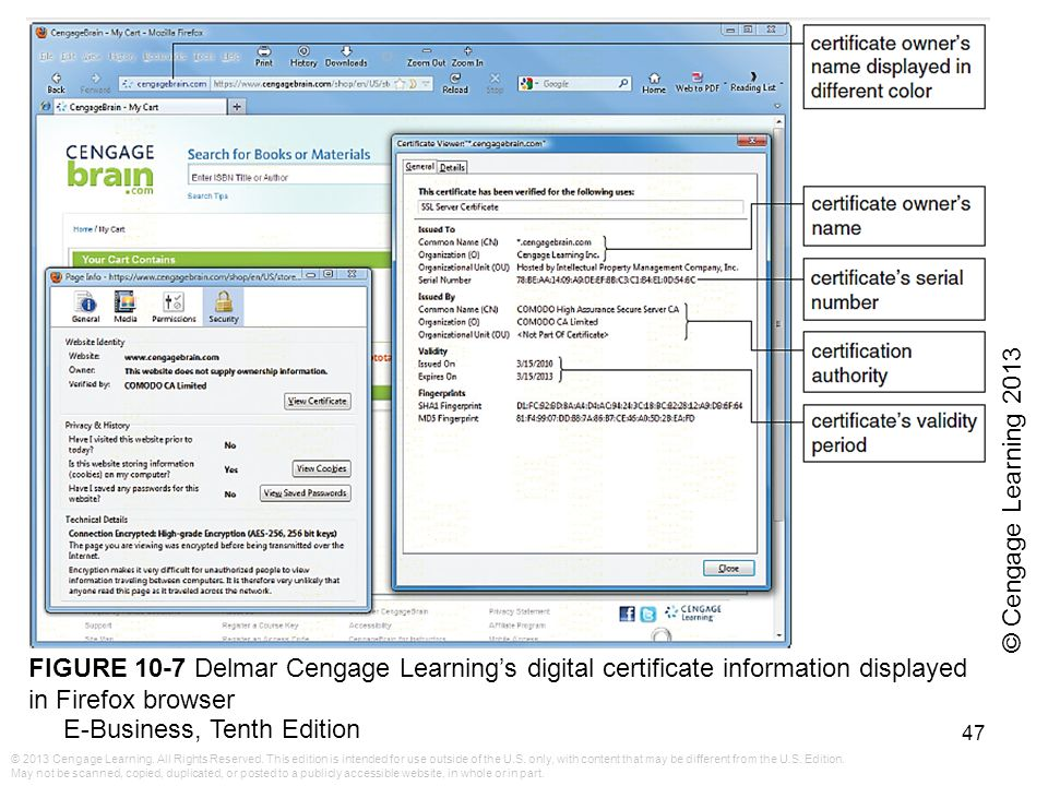 © Cengage Learning 2013 FIGURE 10-7 Delmar Cengage Learning's digital certificate information displayed in Firefox browser.