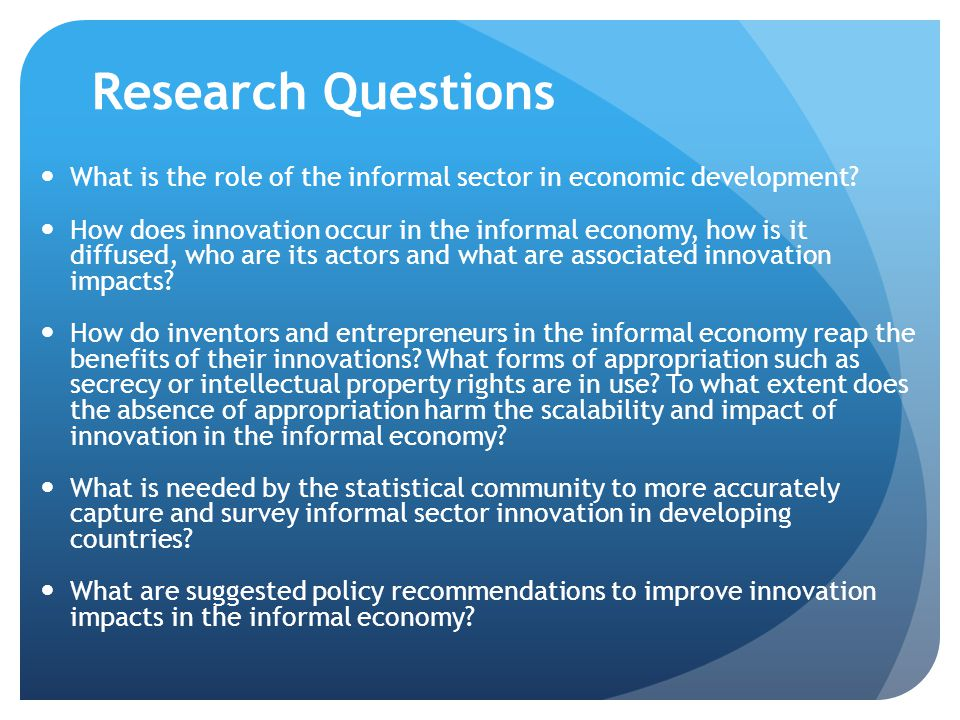 Research Questions What is the role of the informal sector in economic development
