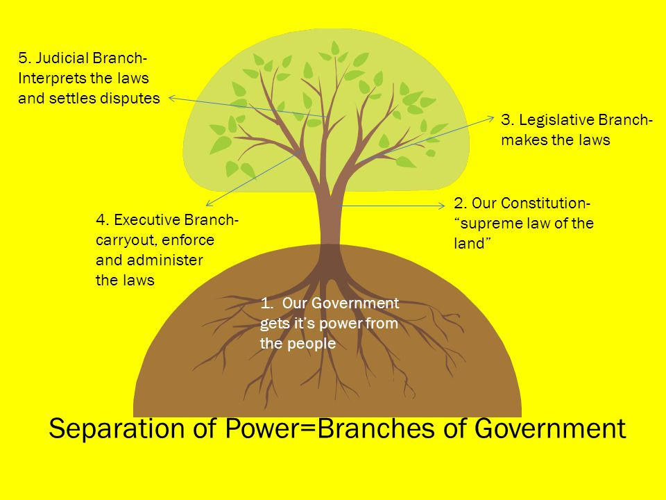 Separation of Power=Branches of Government