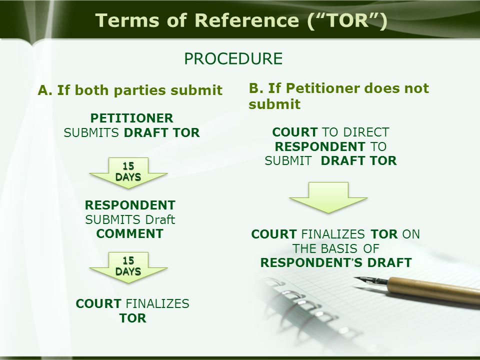 Terms of Reference ( TOR )