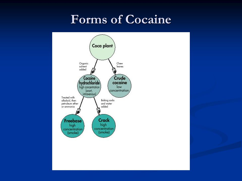 Forms of Cocaine