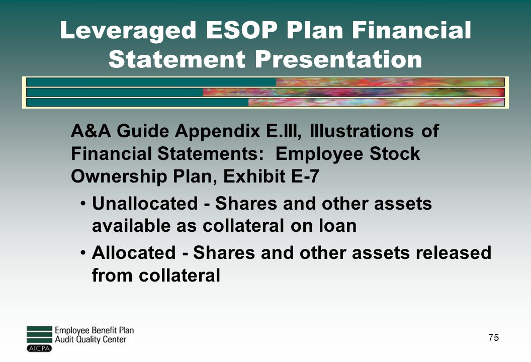 Leveraged ESOP Plan Financial Statement Presentation
