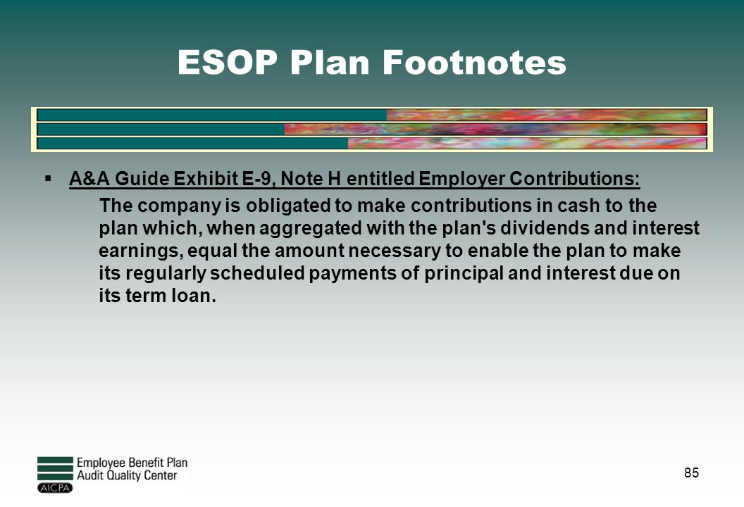 ESOP Plan Footnotes A&A Guide Exhibit E-9, Note H entitled Employer Contributions: