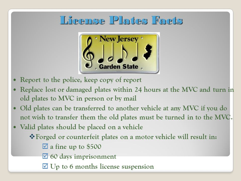 License Plates Facts Report to the police, keep copy of report