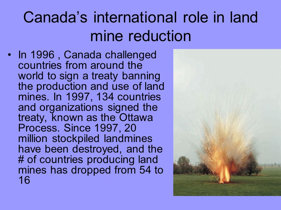 Canada's international role in land mine reduction