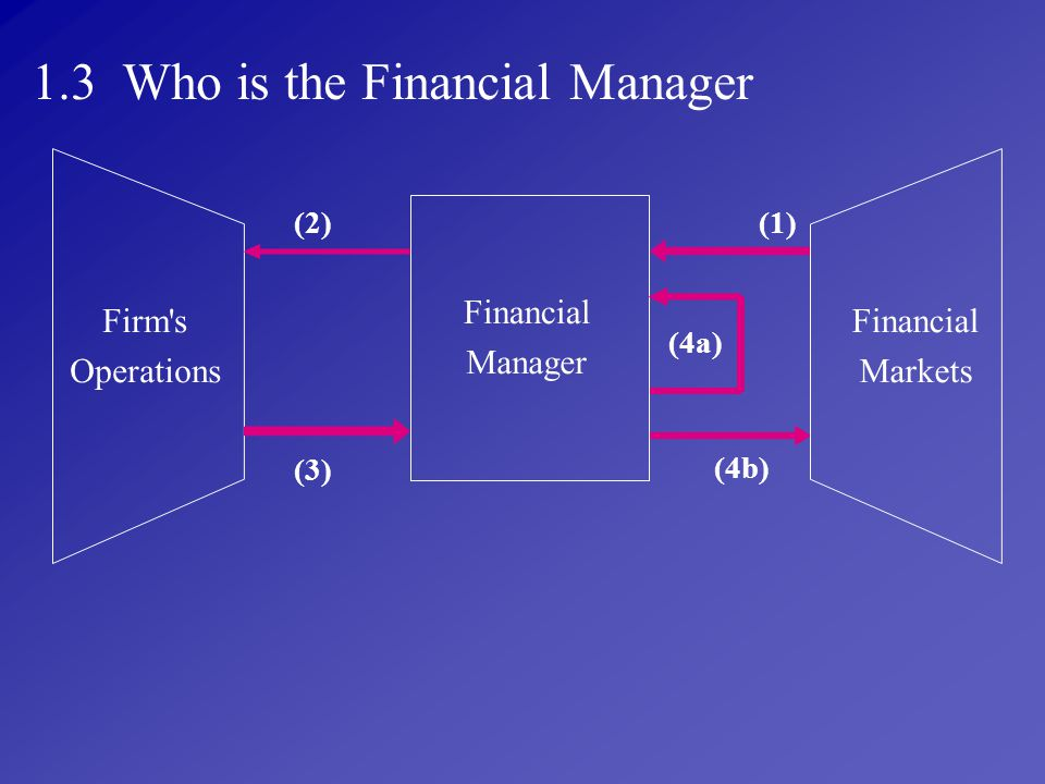 1.3 Who is the Financial Manager