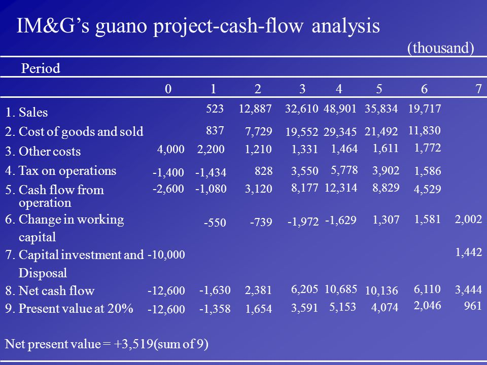 IM&G's guano project-cash-flow analysis