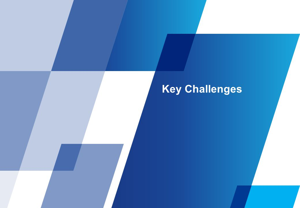 Key Challenges Effective tax rate of 33.99% for domestic companies and 43.26% for foreign companies.