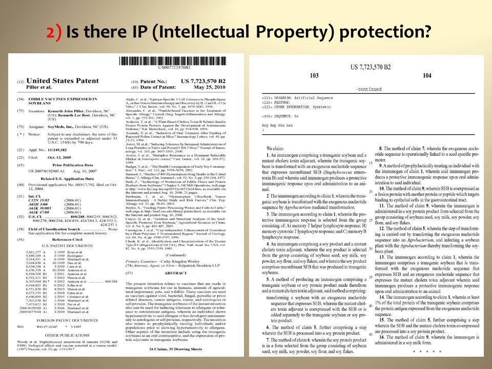 2) Is there IP (Intellectual Property) protection