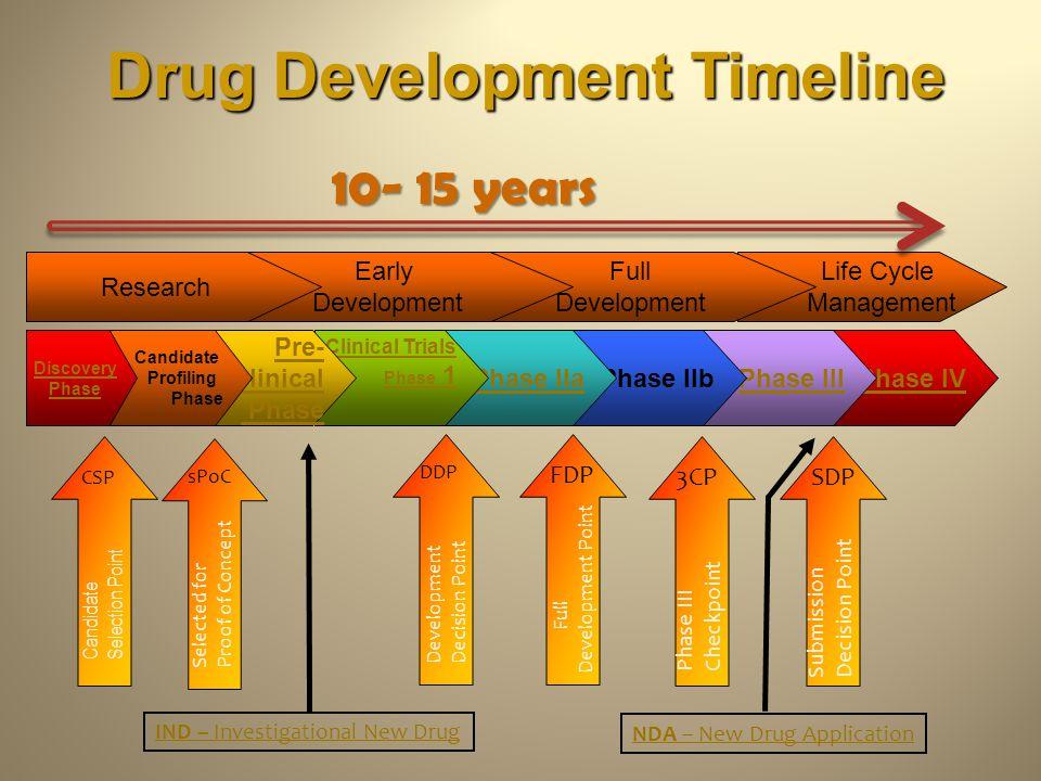 Drug Development Timeline