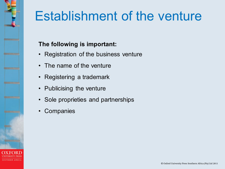Establishment of the venture