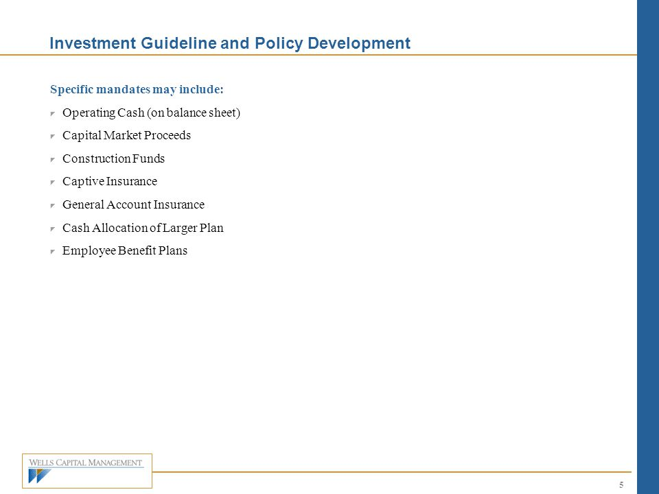 Investment Guideline and Policy Development
