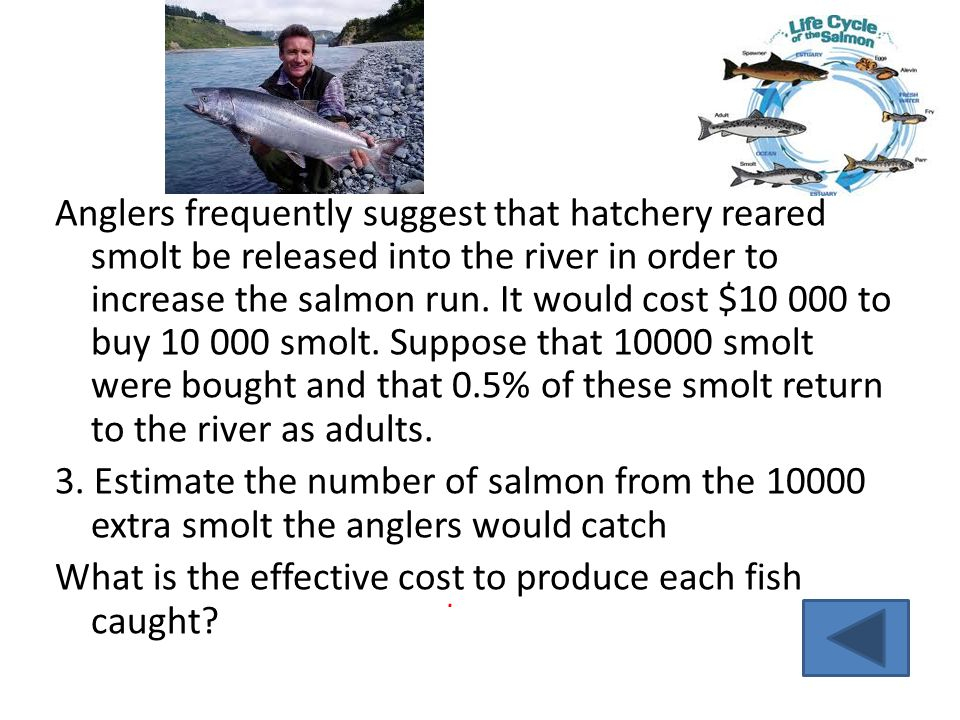 Anglers frequently suggest that hatchery reared smolt be released into the river in order to increase the salmon run.