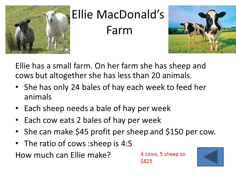 Ellie MacDonald's Farm