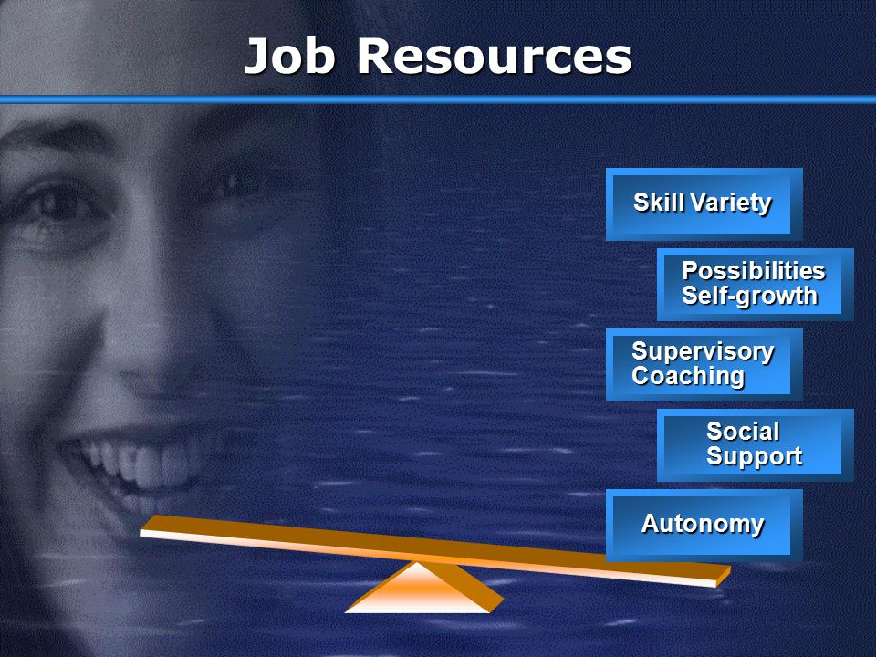 Job Resources Skill Variety Possibilities Self-growth