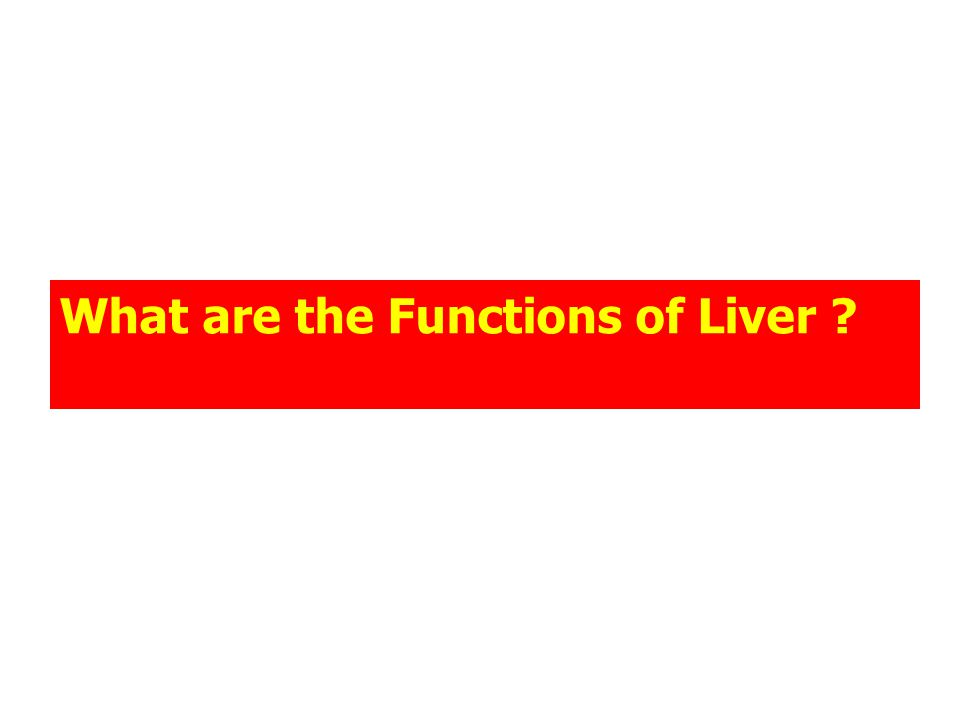 What are the Functions of Liver