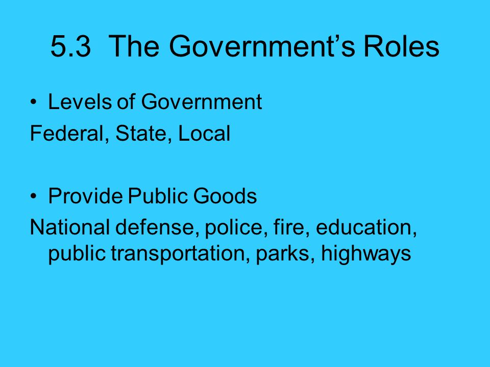 5.3 The Government's Roles