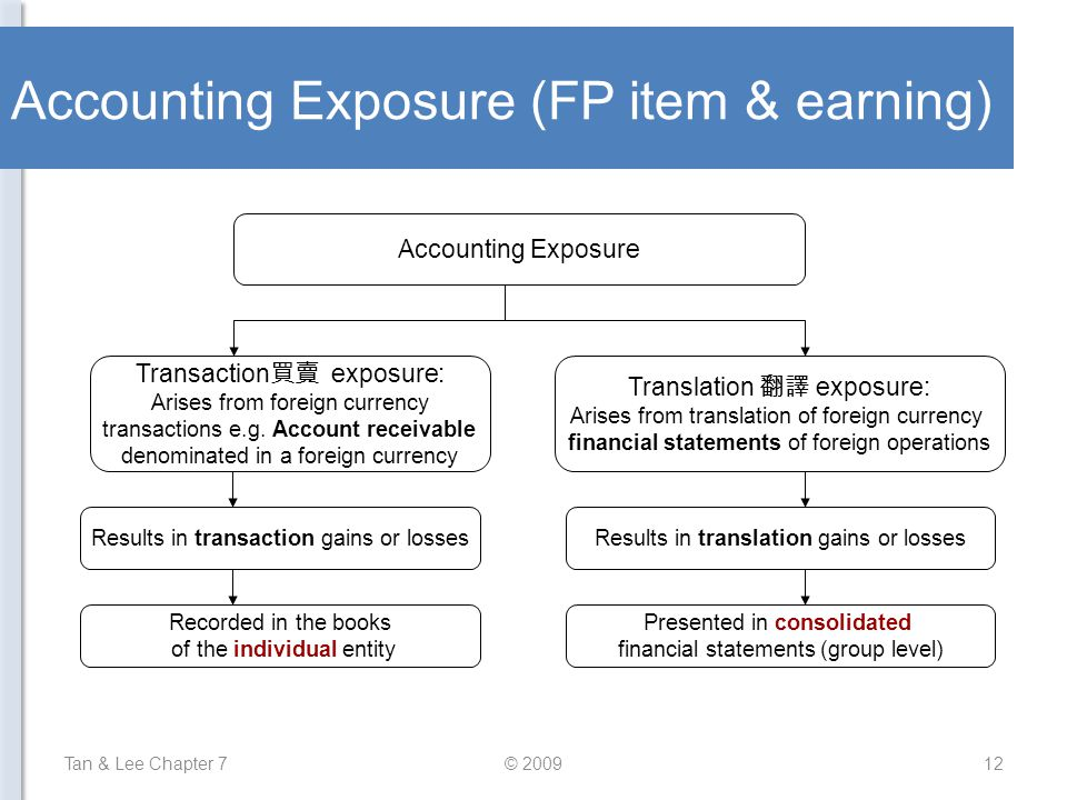 Accounting Exposure (FP item & earning)