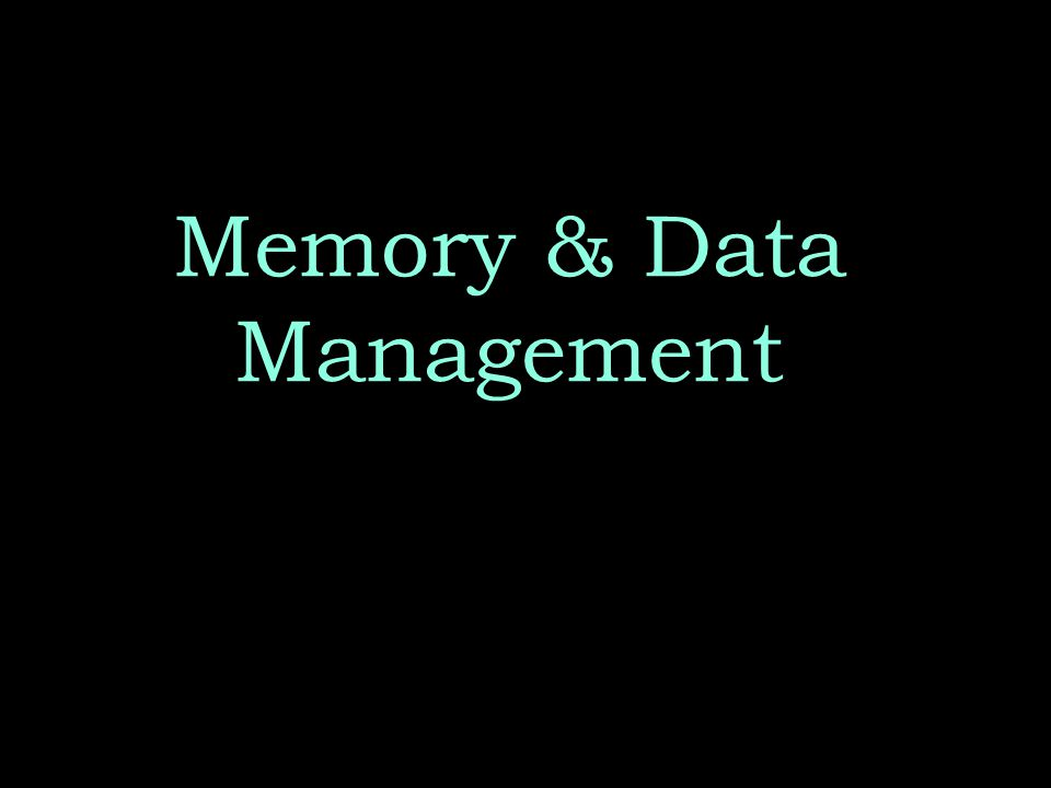 Memory & Data Management