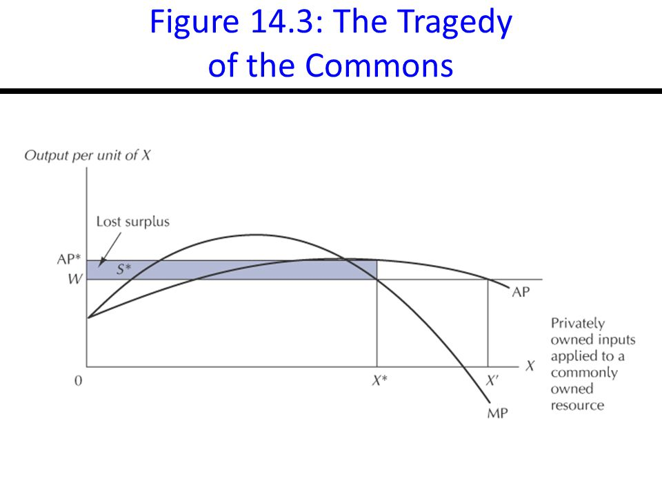 Figure 14.3: The Tragedy of the Commons