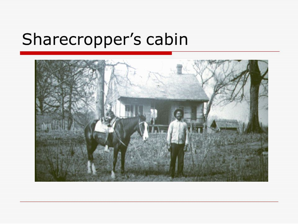 Sharecropper's cabin