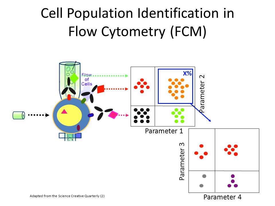 Cell Population Identification in Flow Cytometry (FCM)