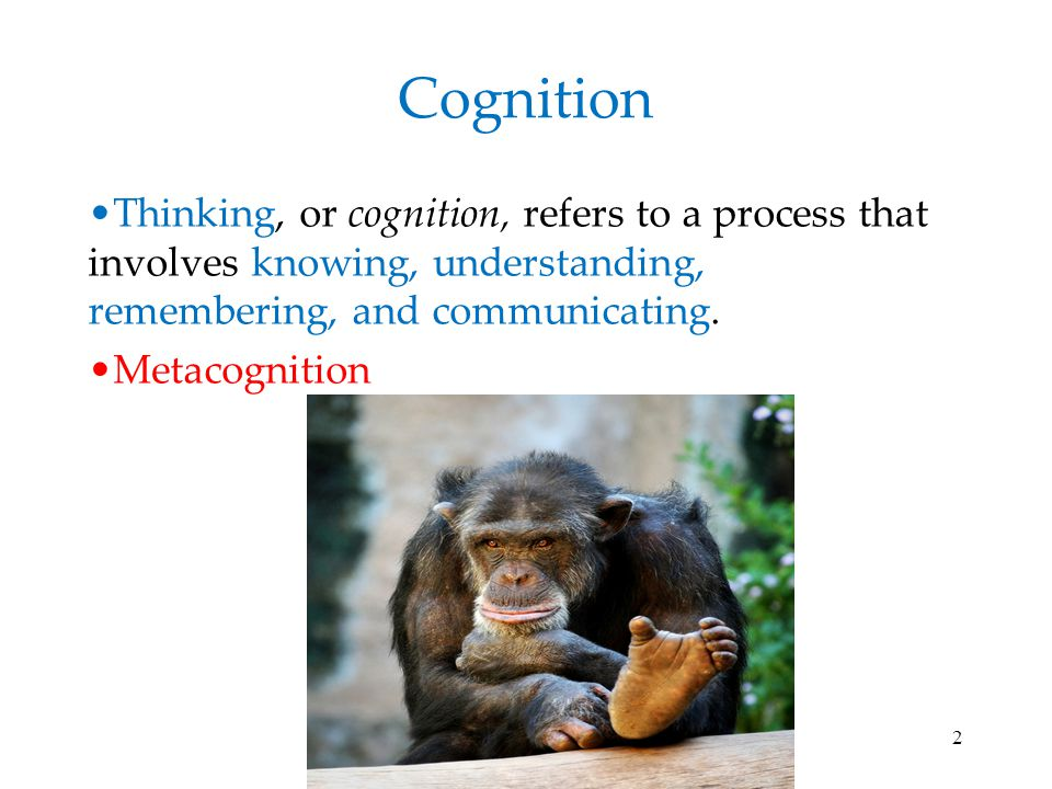 Cognition Thinking, or cognition, refers to a process that involves knowing, understanding, remembering, and communicating.