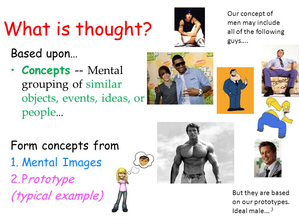 What is thought Based upon…