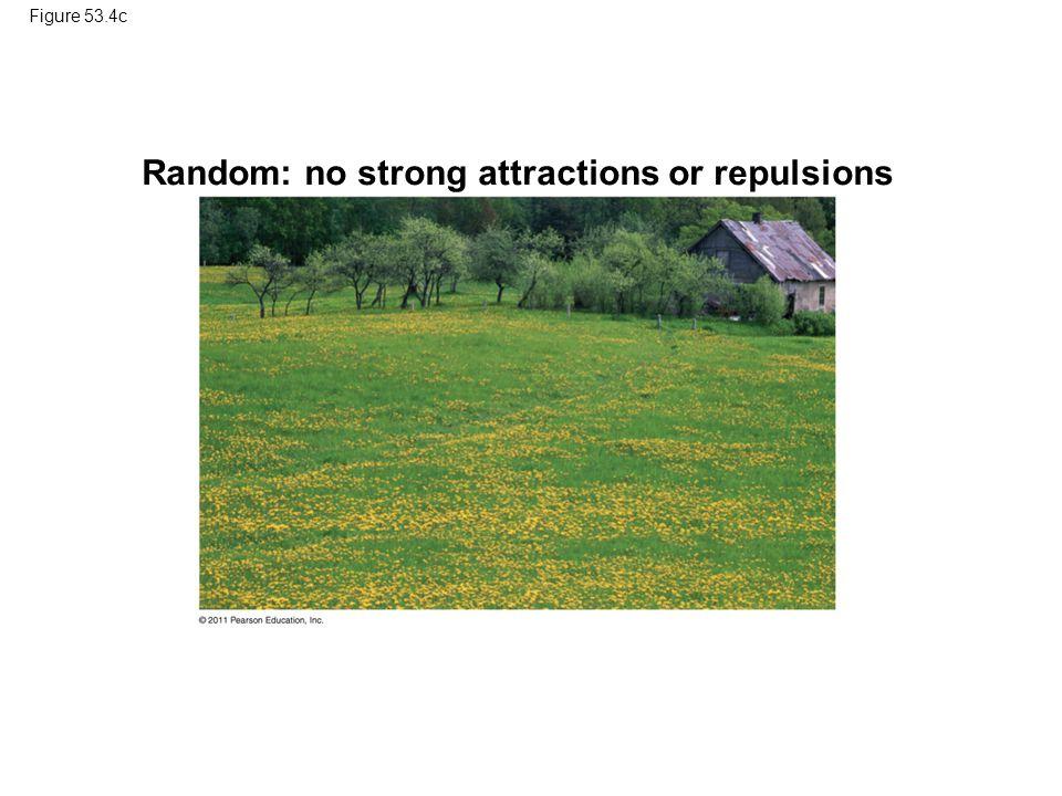 Random: no strong attractions or repulsions