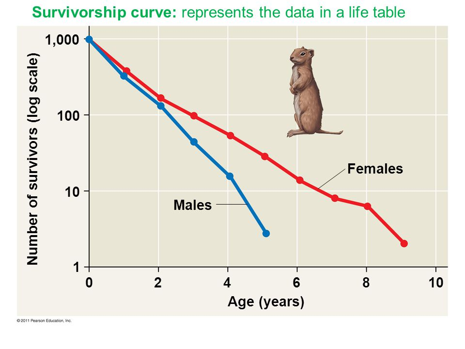 Survivorship curve: represents the data in a life table