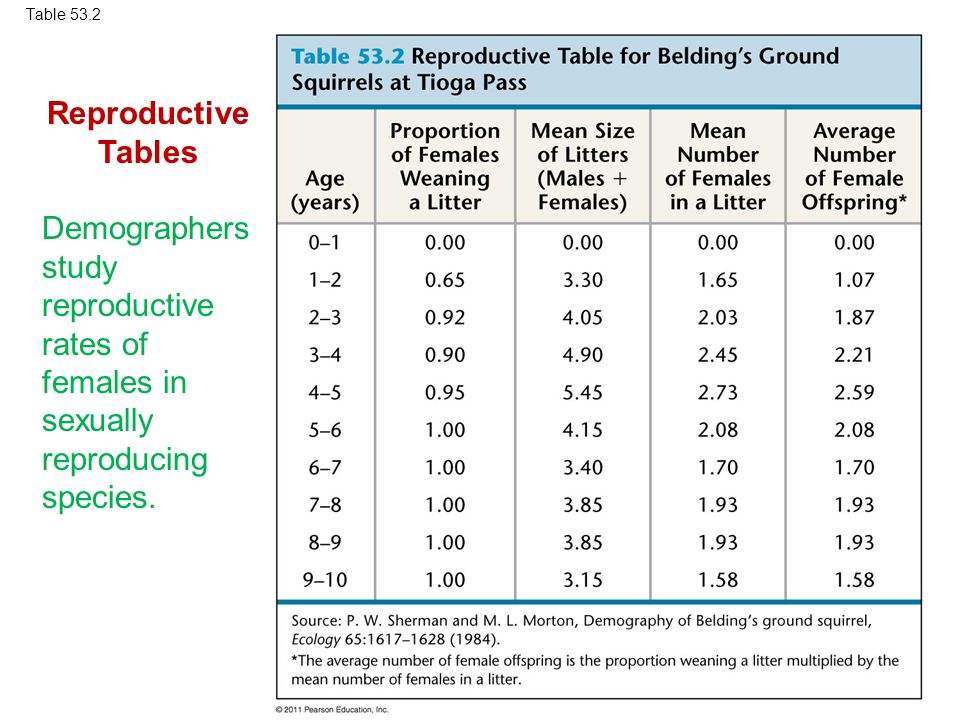 Table 53.2 Reproductive Tables. Demographers study reproductive rates of females in sexually reproducing species.