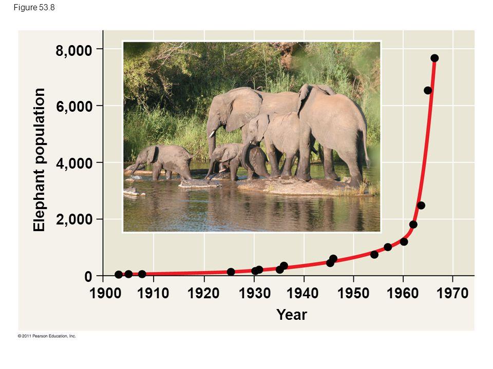 Figure 53.8 8,000. 6,000. Elephant population. 4,000. 2,000.