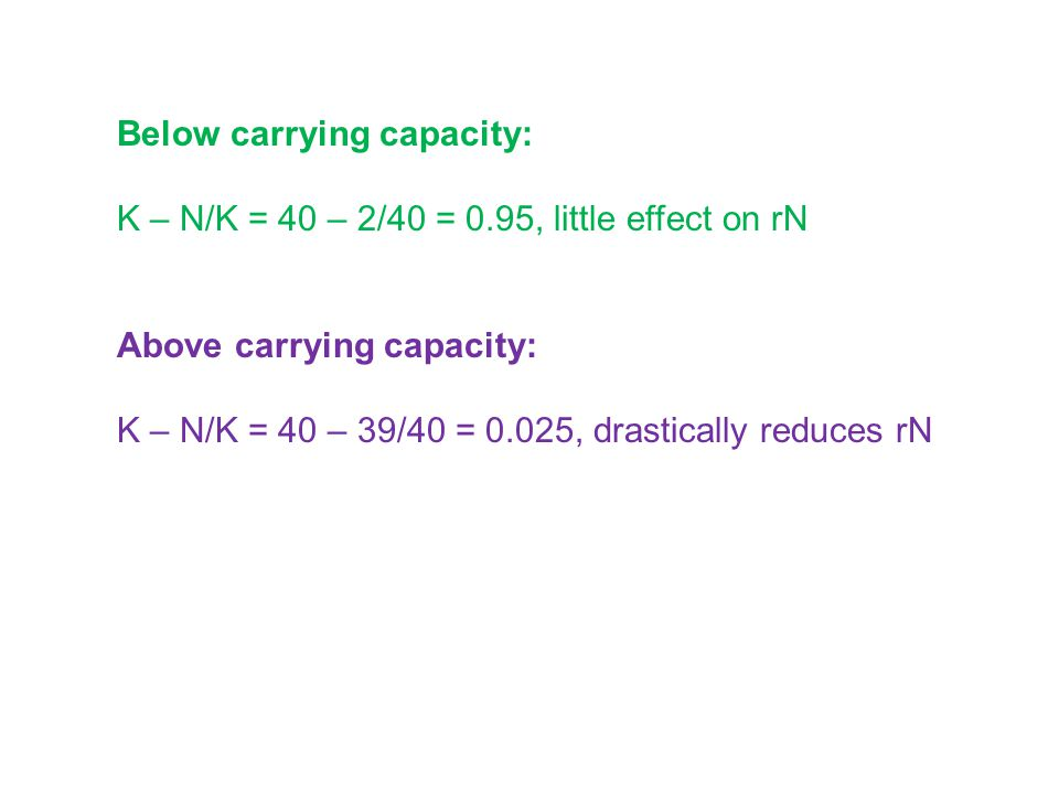 Below carrying capacity:
