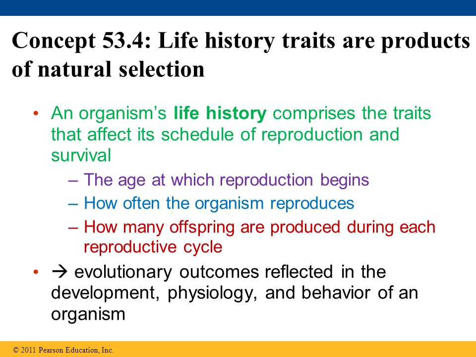 Concept 53.4: Life history traits are products of natural selection