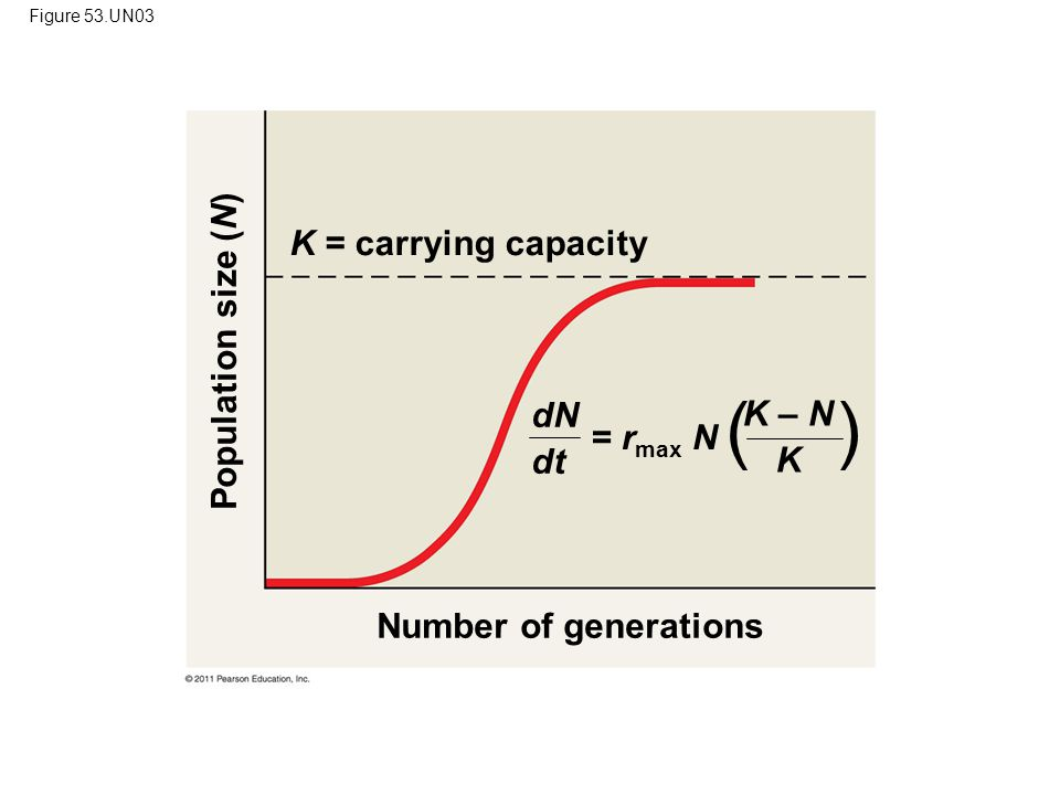 ( ) K = carrying capacity Population size (N) dN K – N dt K = rmax N