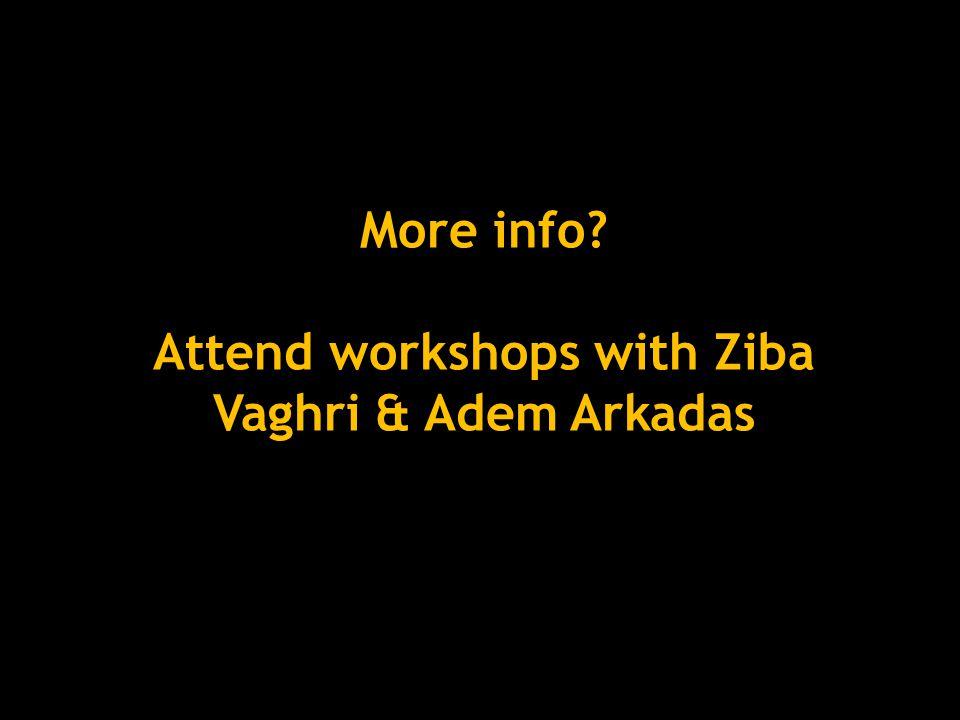 More info Attend workshops with Ziba Vaghri & Adem Arkadas