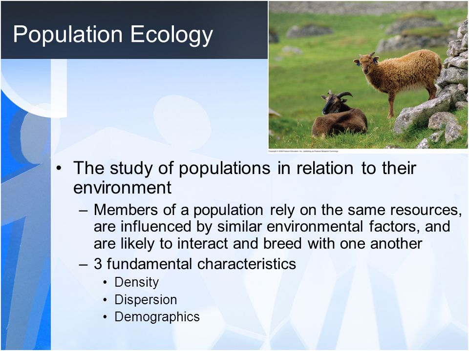 Population Ecology The study of populations in relation to their environment.