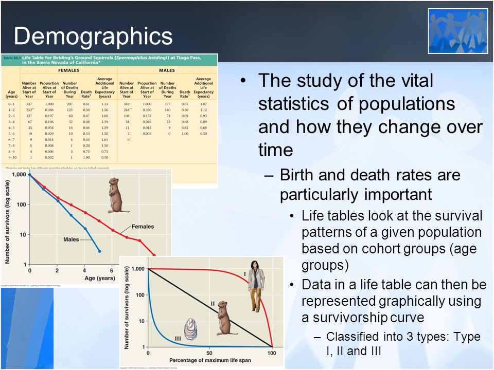 Demographics The study of the vital statistics of populations and how they change over time. Birth and death rates are particularly important.