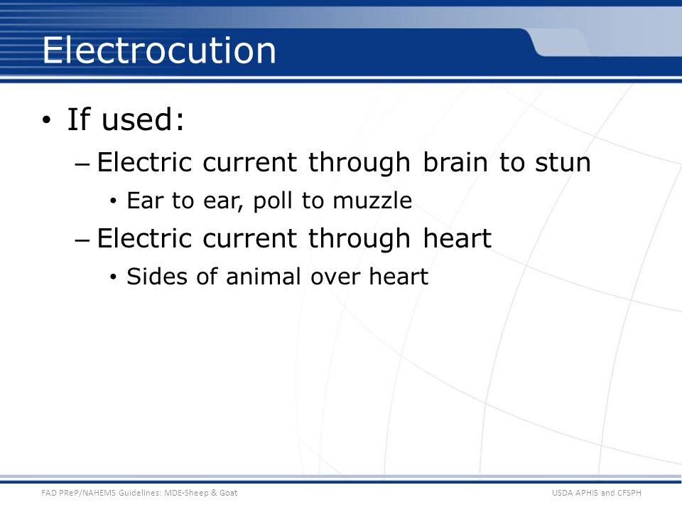 Electrocution If used: Electric current through brain to stun