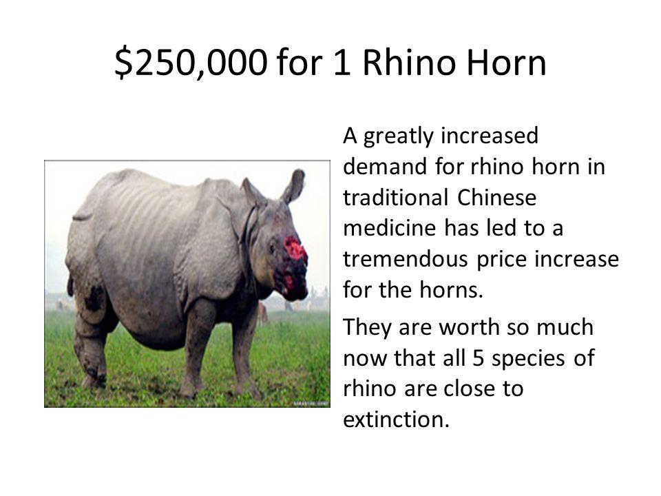 $250,000 for 1 Rhino Horn