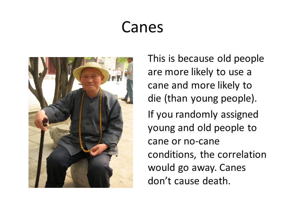 Canes