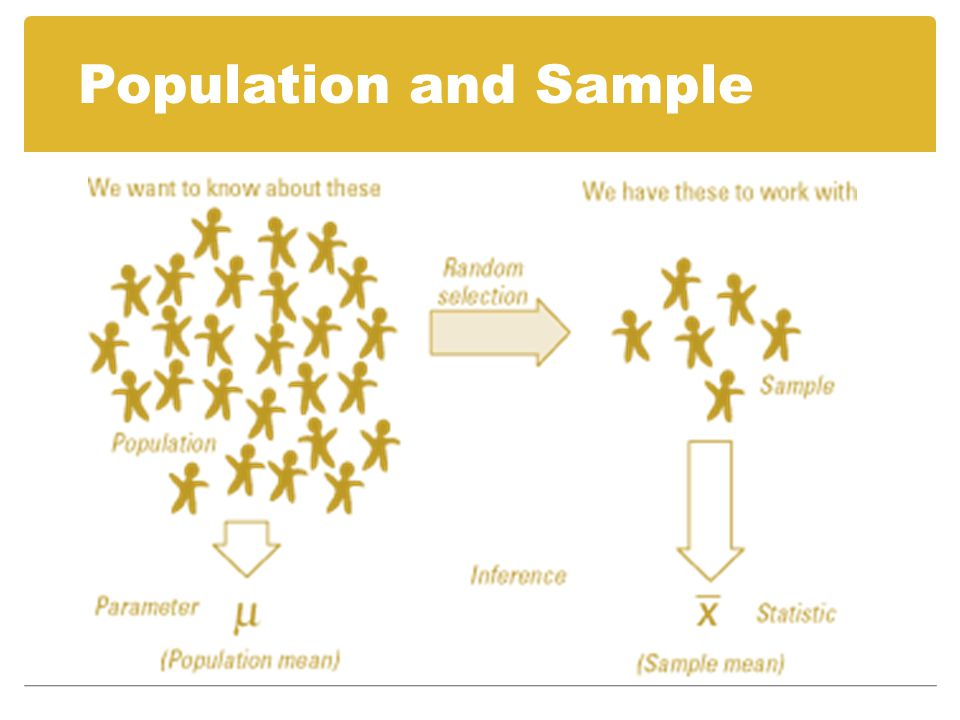 Population and Sample