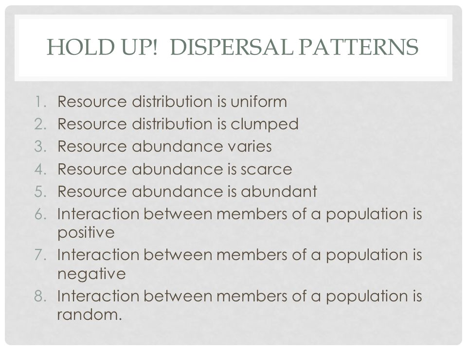 Hold up! Dispersal patterns