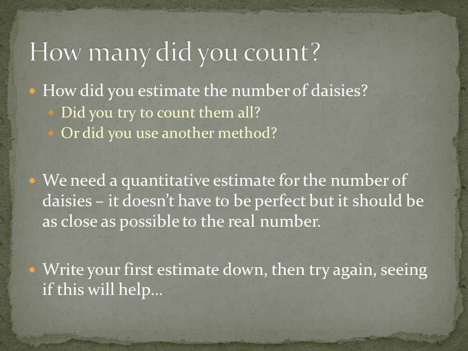 How many did you count How did you estimate the number of daisies