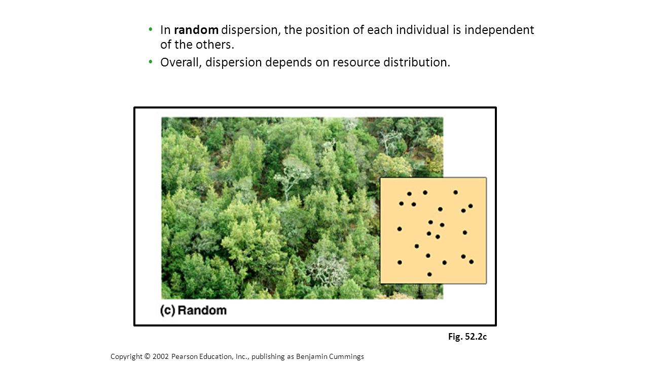 Overall, dispersion depends on resource distribution.