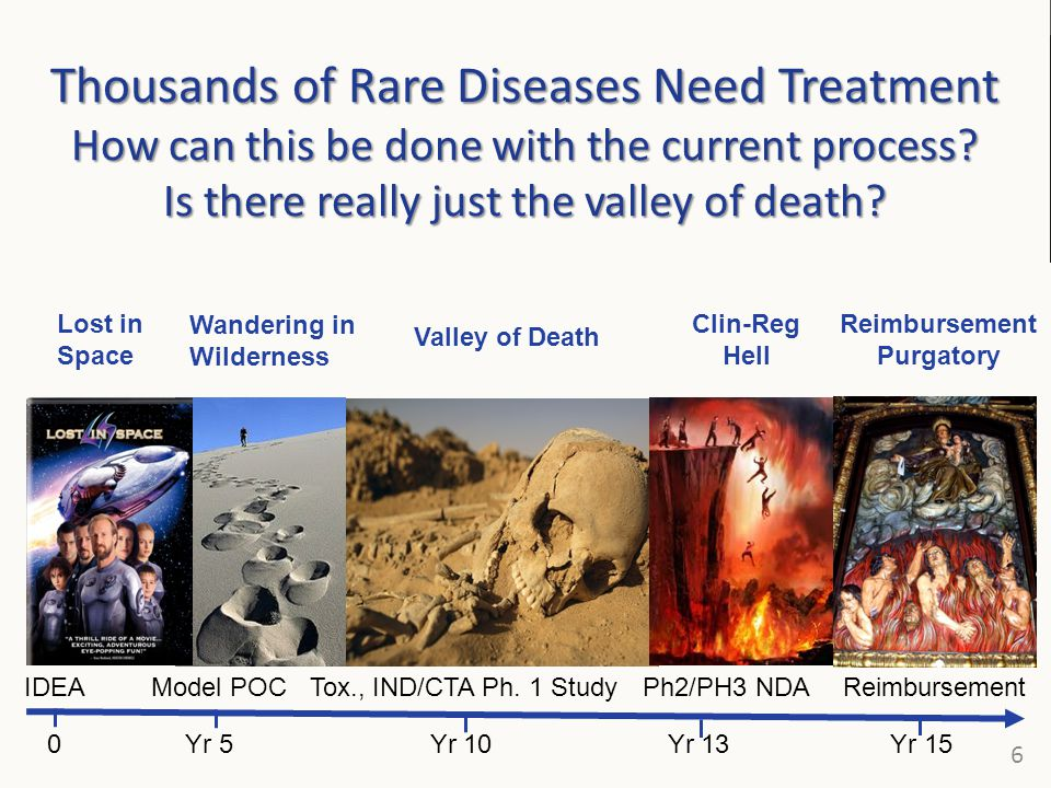 Thousands of Rare Diseases Need Treatment How can this be done with the current process Is there really just the valley of death