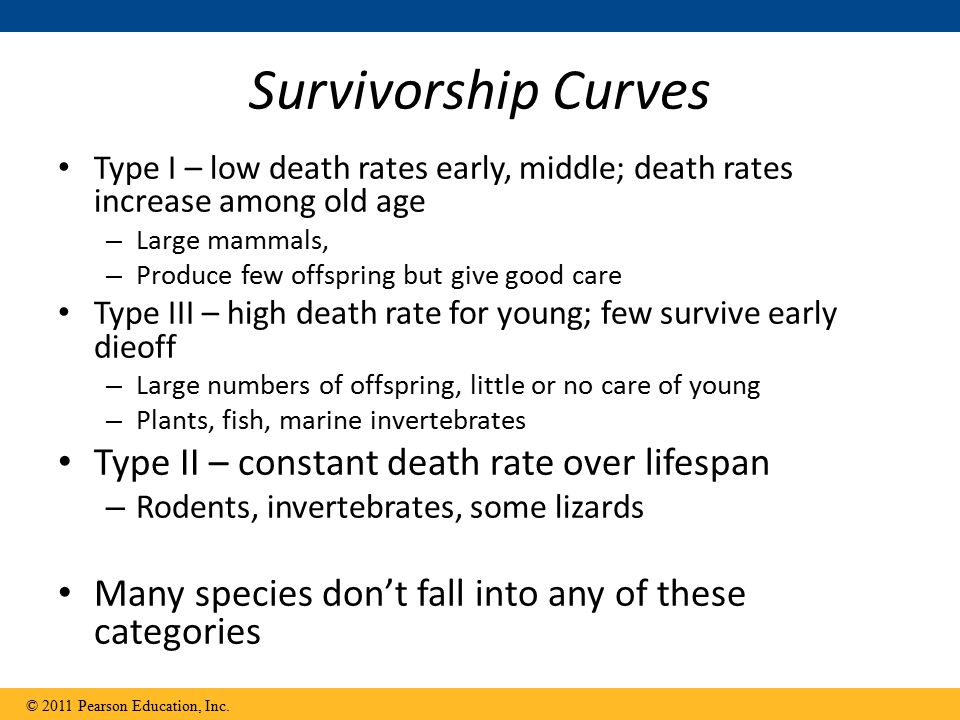 Survivorship Curves Type II – constant death rate over lifespan