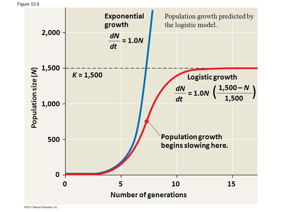 ( ) Exponential growth 2,000 dN dt = 1.0N 1,500 K = 1,500