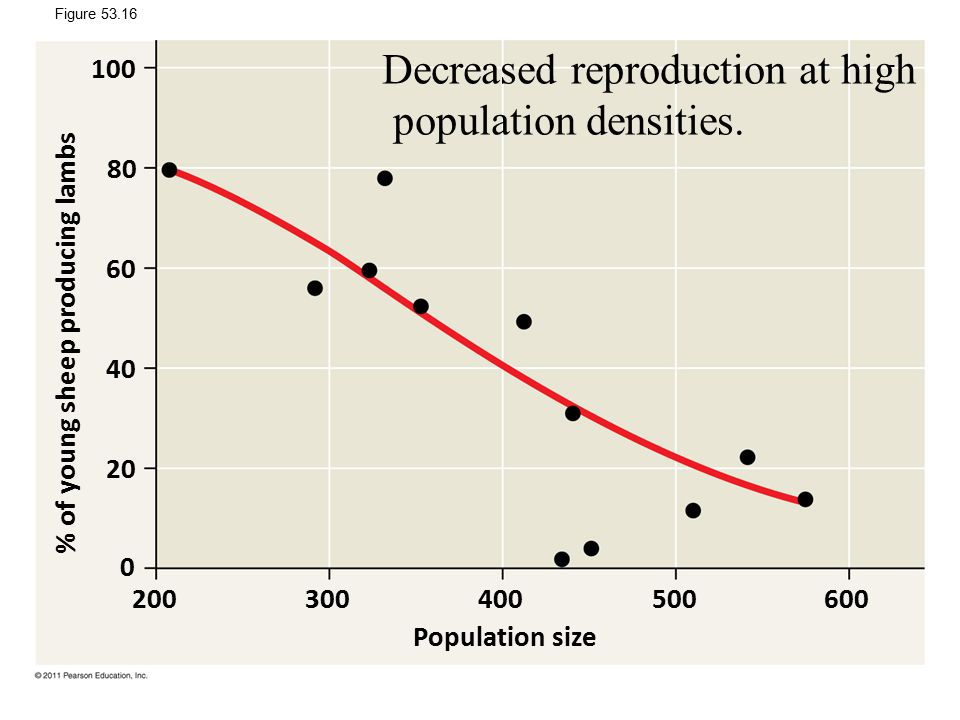 Decreased reproduction at high population densities.
